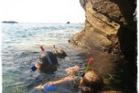 Nemo snorkeling