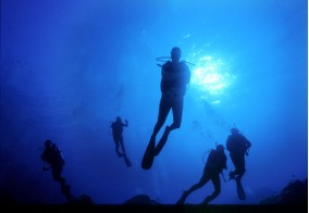 "Diving ""Corallo Nero"""